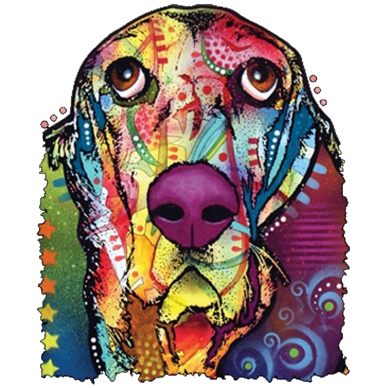 Basset Neon Printed T-Shirt Tall