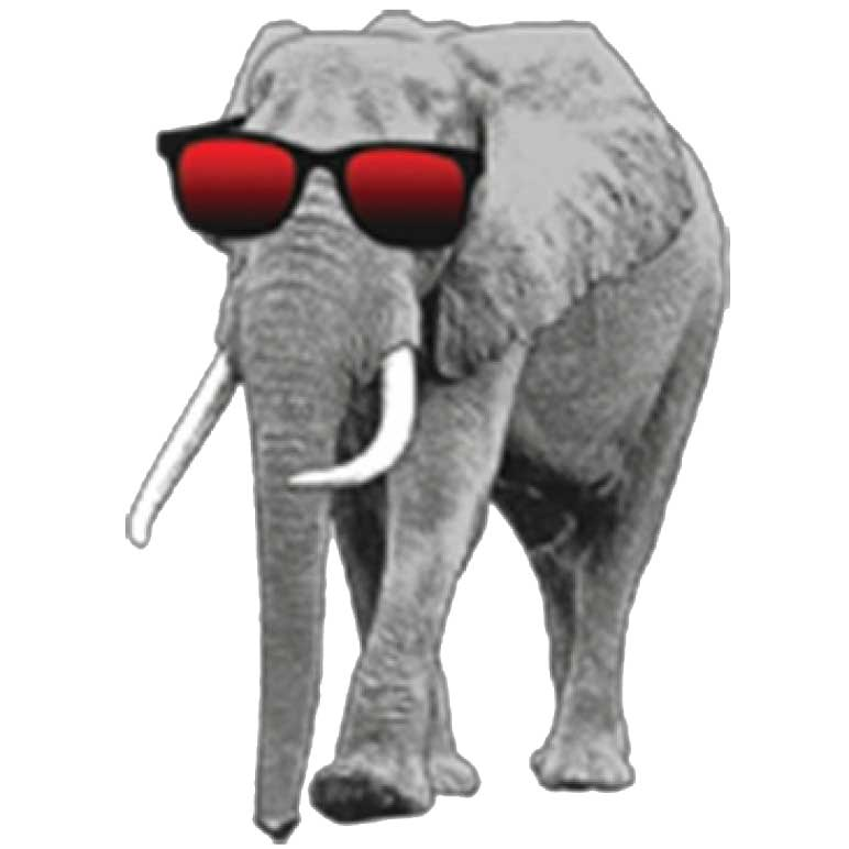 Elephant With Sunglasses Printed T-Shirt