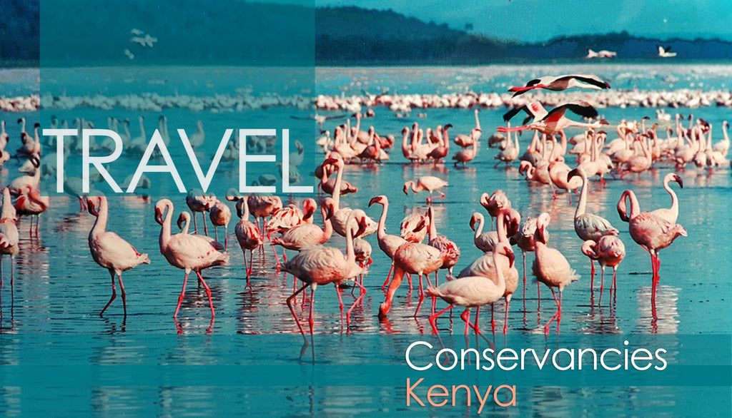 Kenya Conservancies