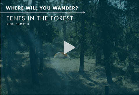 Where Will You Wander? - Tents in the Forest