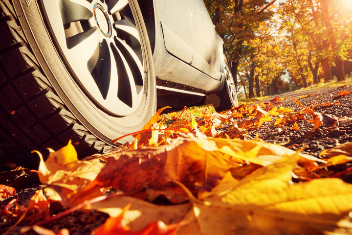 Tips for Fall Car Care