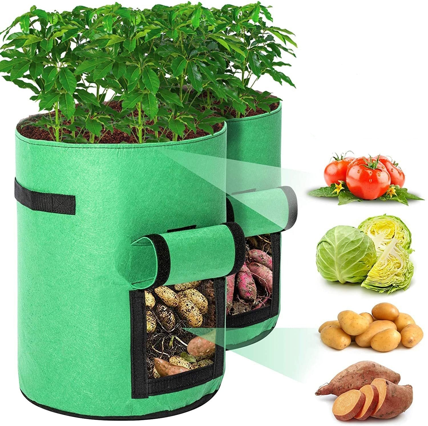 Salazons™ Amazing Bag-A-Plant Potato Growing Pouch
