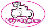 I Ride My Own Reflective Helmet Decal Sticker, 7 Colors
