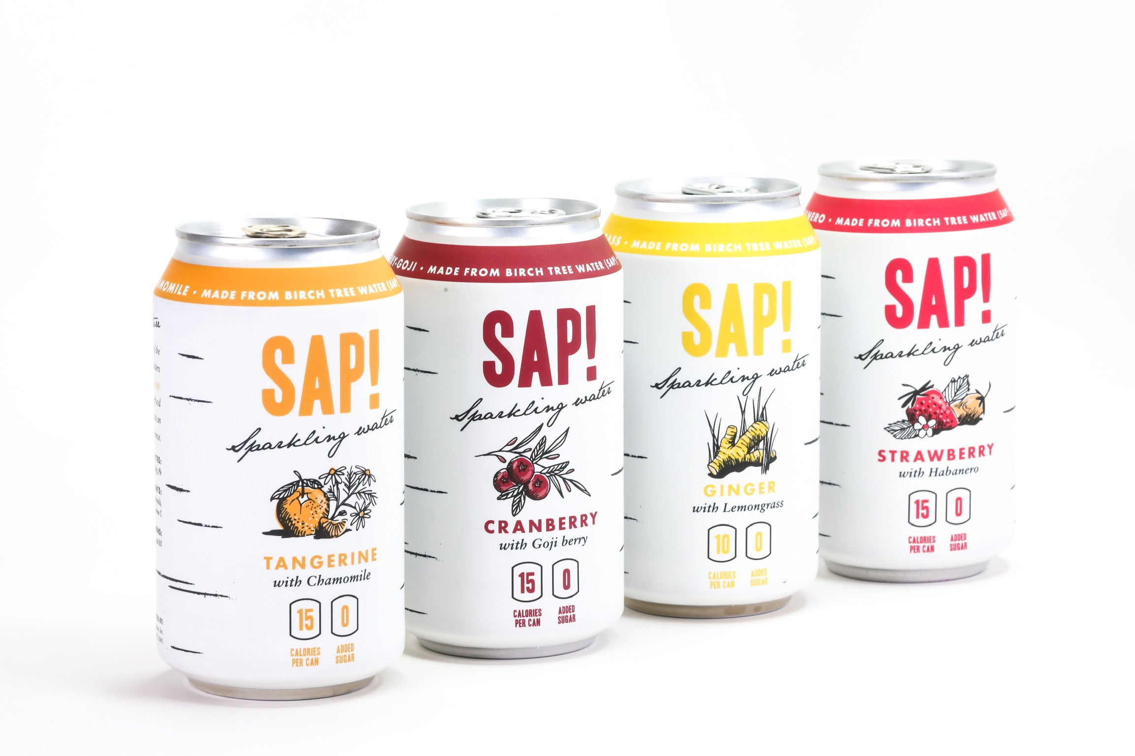 New Sparkling Water Sampler Pack - 24 cans (6 of Each Flavor)