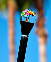 Genuine Dried Flowers in Clear Lucite Knob, Black Wood Shaft Walking Stick, 37