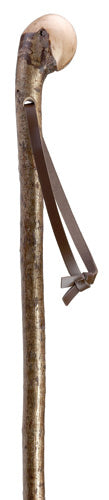 Hazel Root Knob Walking Stick with Real Leather Strap 36