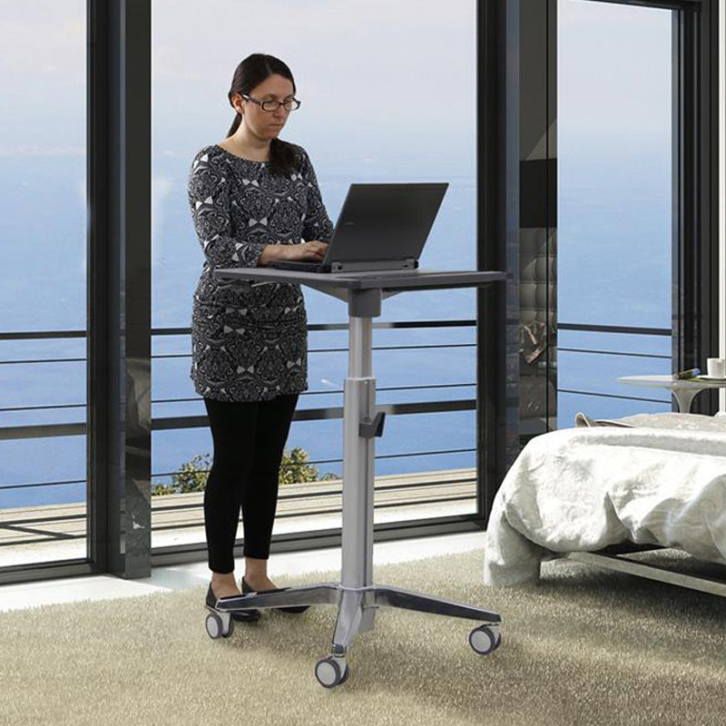 Adjustable-Height Stand-Up Desk, Silver
