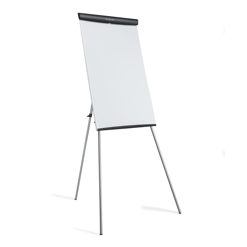 Portable Presentation Whiteboard/Flipchart Easel