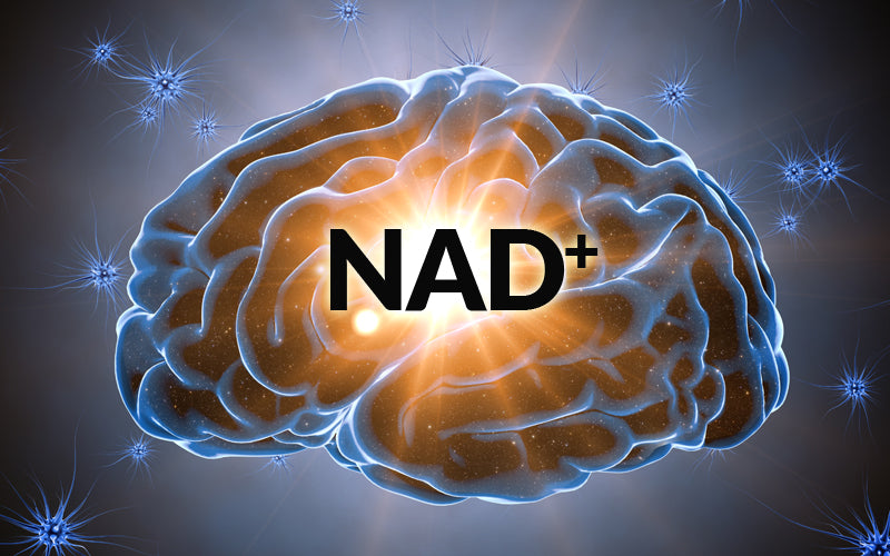Every Celebrity's Secret (NAD+ Infusions): Associated with Disease Reversal, Athletic Performance, and Brain Function