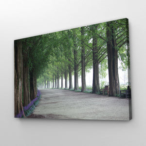 Forest Photography Print