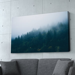Foggy Forest Photography Print