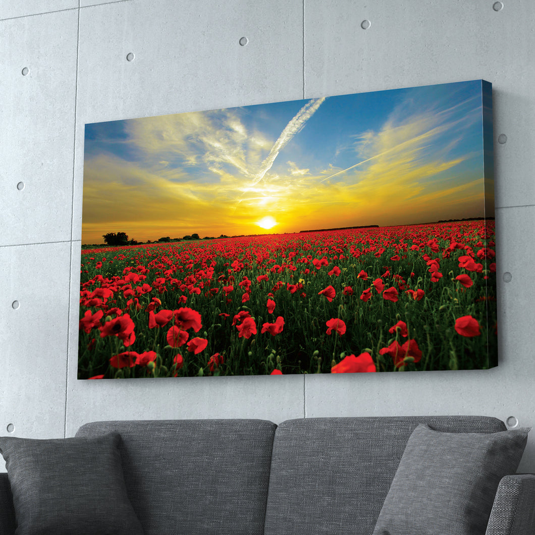 Sunset in the Meadows Print