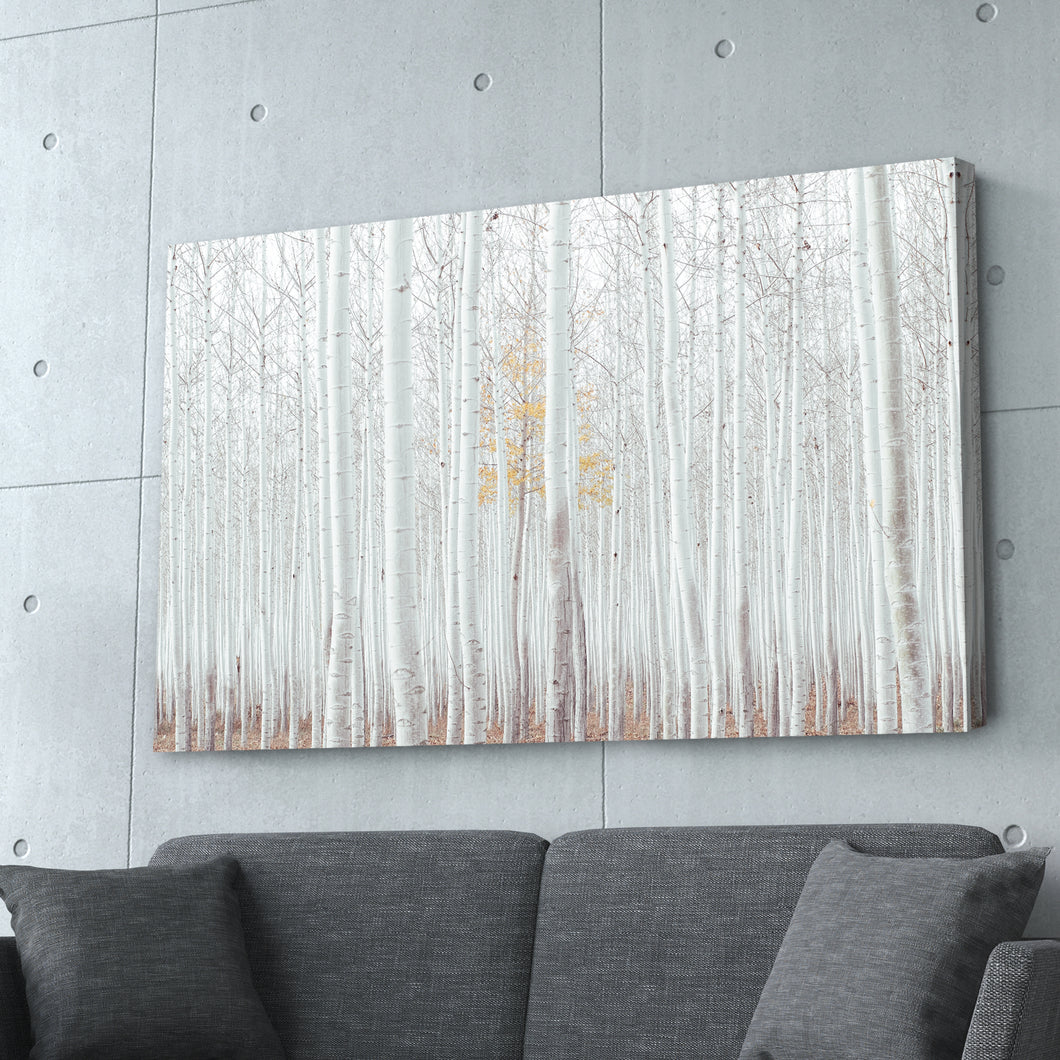 White Forest Abstract Print