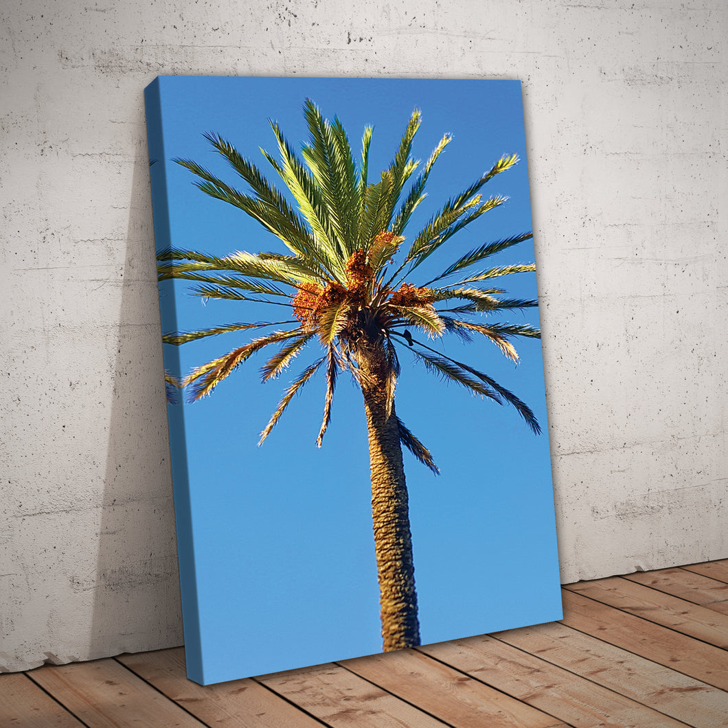 Palm Tree Nature Print