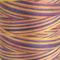 Variegated Confetti - Overlocker Thread-Madeira-Splashings of Fabric