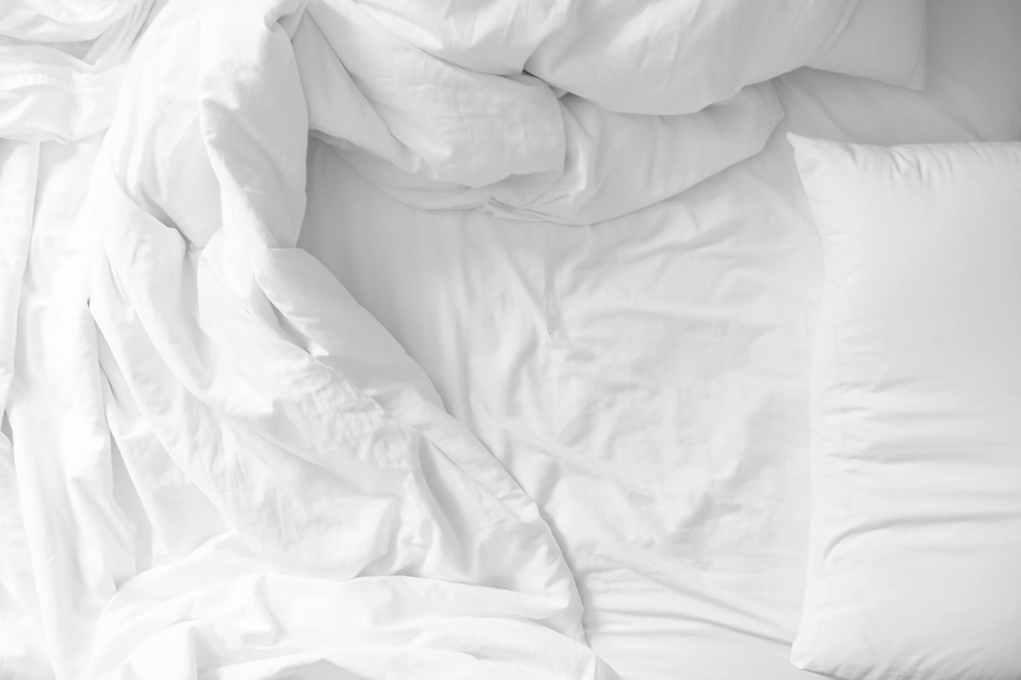 Why We Use Suntheanine® in Our Natural Sleep Aid
