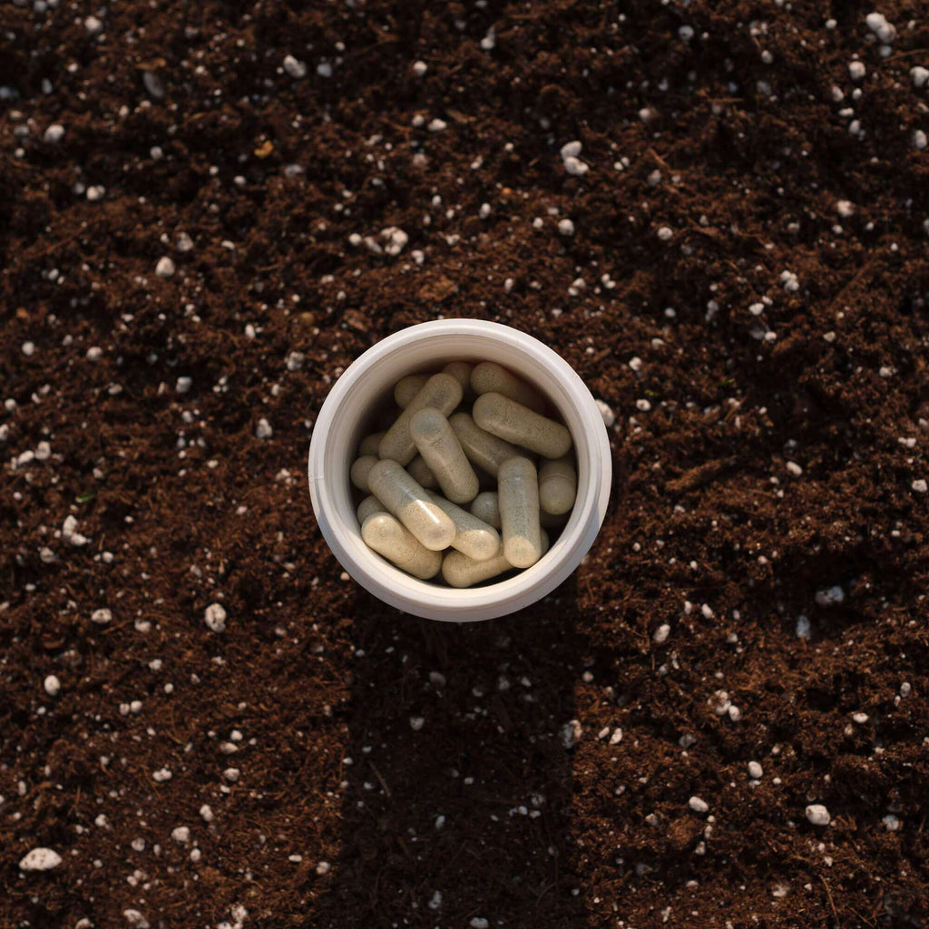 Bottle of Physician's Choice 30-count Soil-Based Probiotics in the dirt