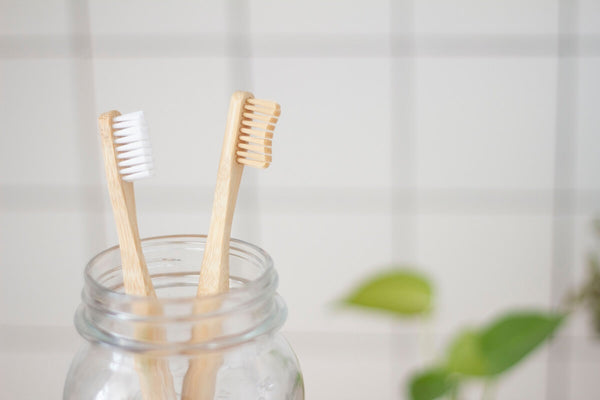 Two toothbrushes in a jar on the bathroom counter
