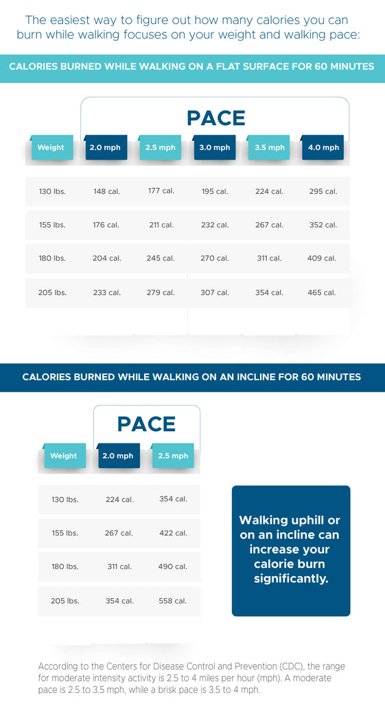Calories Burned Walking | The Daily Dose
