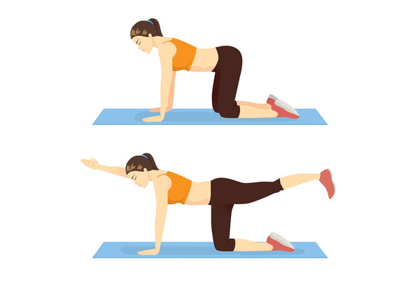 Illustration of a woman doing a birddog crunch ab exercise