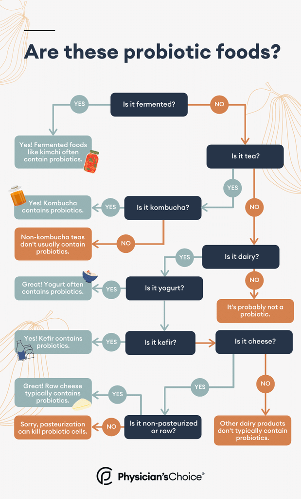 Infographic of probiotic food sources