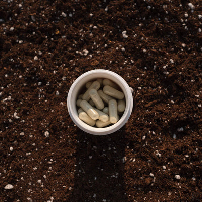 Physician's Choice Soil-Based Probiotic 30-count bottle in the soil