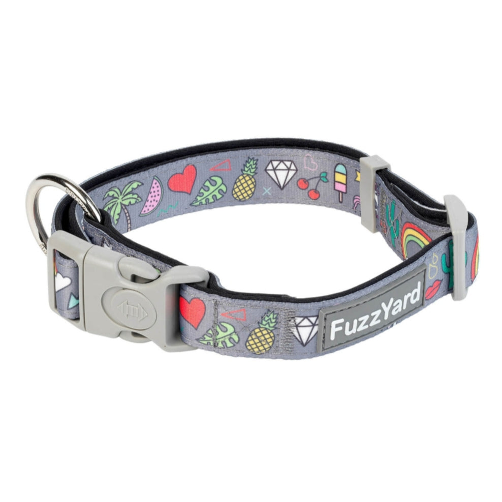Coachella Dog Collar