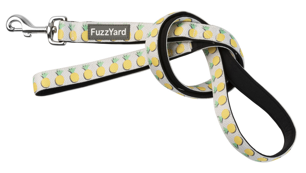 Pina Colada (Pineapple) Dog Lead