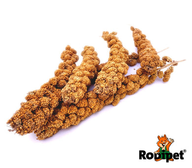 Rodipet® Yellow Foxtail Millet Sprays 170g