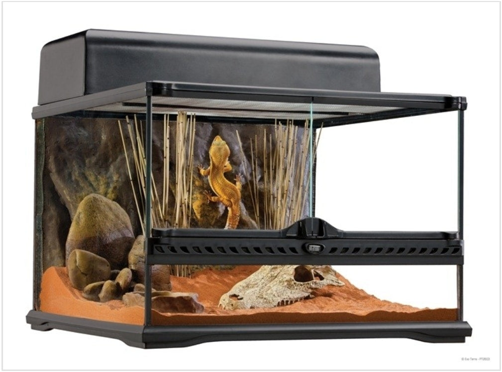 Exo Terra Natural Terrarium - Advanced Reptile Habitat - Low - 18
