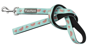 Summer Punch (Watermelon) Dog Lead
