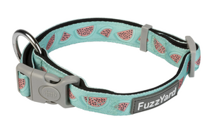 Summer Punch (Watermelon) Dog Collar