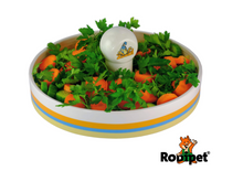 ZooDi® Glazed Ceramic Food Bowl for Fresh Veggies 28cm