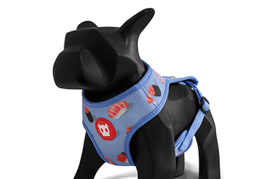Wasabi Air Mesh Harness