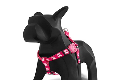 Pink Skull Step-In Harness