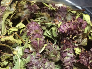Self Heal, Prunella vulgaris organic herb, All Heal, Xia ku cao
