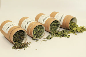 Herbal Sampler Gift- Culinary: Oregano, Thyme, Lovage, Marjoram, eco-friendly recyclable organically grown on farm