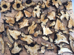 Comfrey root, dried Symphyum officinale organic