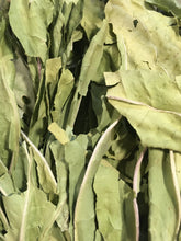 Plantain leaf, dried organic herb