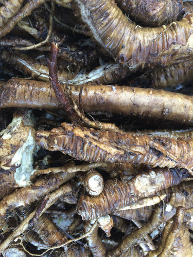 Lovage Root dried, Organic Levisticum officinale herb Menopause PMS hormone balance digestive remedy