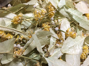 Linden (Lime) blossoms, dried Tilia cordata organic 1 oz.