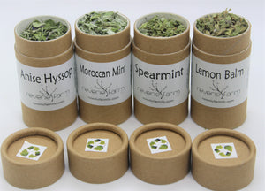 Wellness Herbs Gift- Mint Tea Sampler: Lemon Balm, Spearmint, Moroccan Mint, Anise Hyssop eco-friendly recyclable organically grown USA