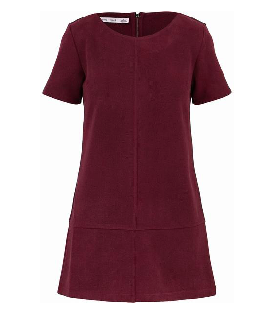 Short Sleeve Suede Shift Dress