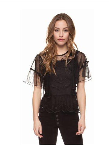 Black Mesh Short Sleeve Embroidered Top
