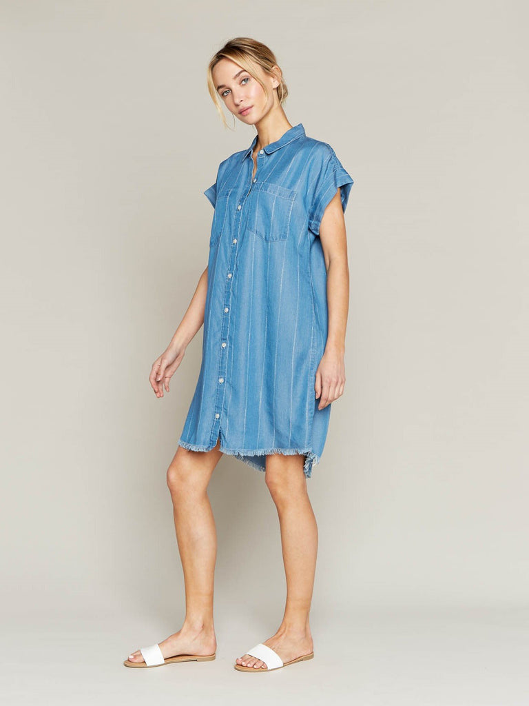 Short Sleeve Denim Dress with White Pinstripes