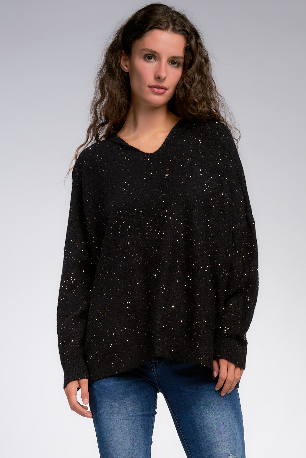 Long Sleeve Sparkle Hoodie Sweater