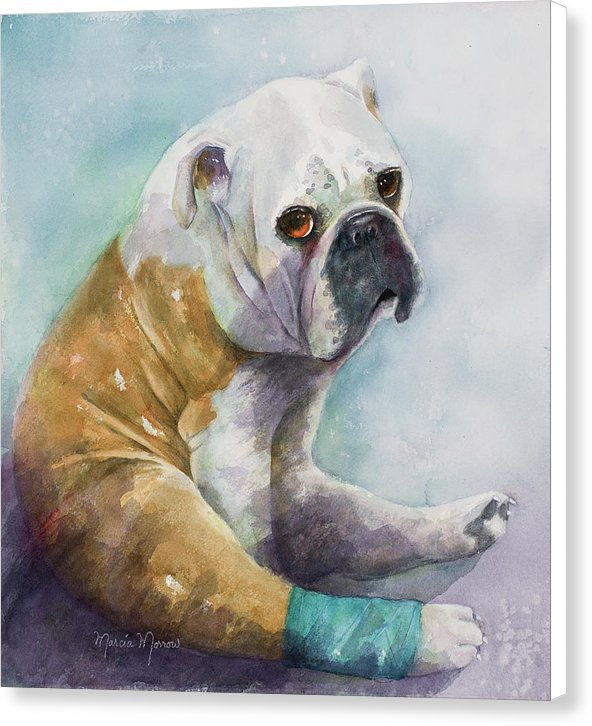 Otis - Canvas Print