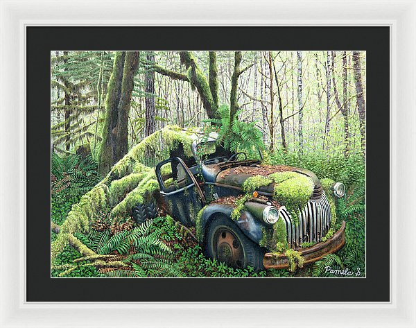 Back To Nature - Framed Print