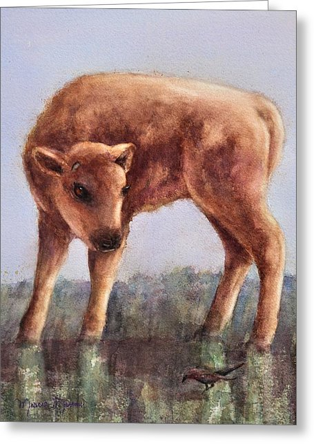 Buffalo Baby - Greeting Card