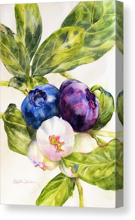 Colors Of The Berries - Canvas Print